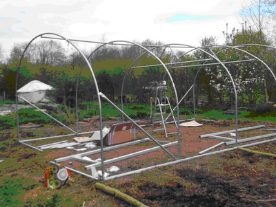 Catsham Polytunnel errection.png